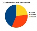EU referendum vote for Cornwall