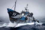 One of Sea Shepherds fleet of vessels rides out a storm protecting our seas.