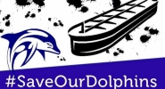 Save Our Dolphins