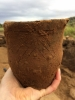 Beaker pot found in grave. Picture: AOC Archaeology