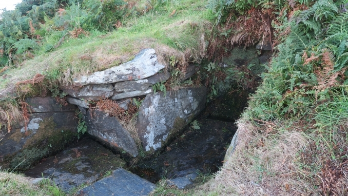 St Patricks Well at Maughold