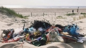 Image from 2MINUTEBEACHCLEAN