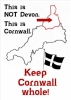 This is not Devon - This is Cornwall